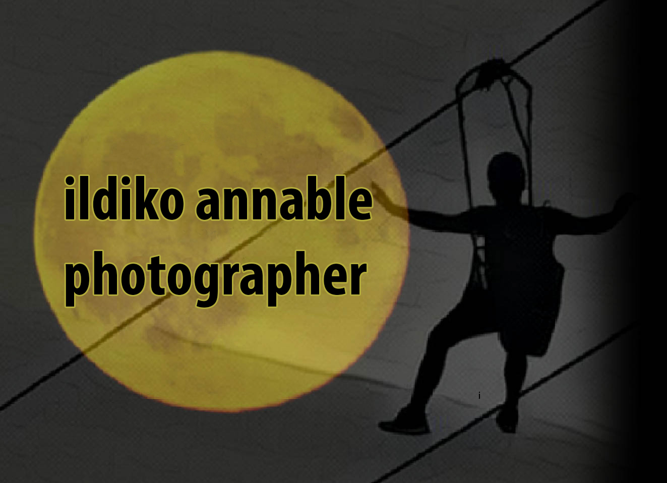 Ildiko Annable, Photographer