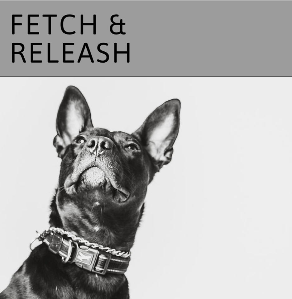Fetch and Releash